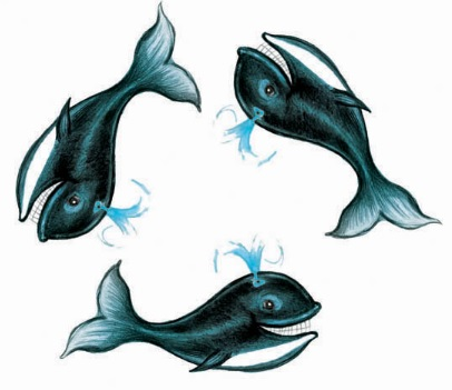 3 кита