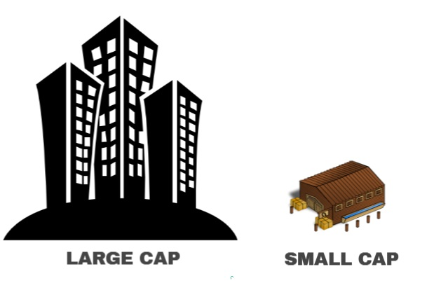 small cap and large cap